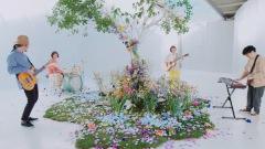 関取 花、2/14に新曲「新しい花」MVをYouTubeプレミア公開