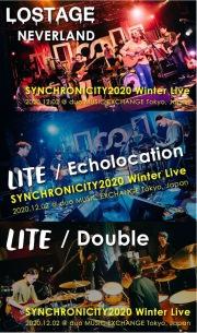 昨年開催された『SYNCHRONICITY2020 Winter Live』より、LOSTAGE、LITEのライヴ映像が公開