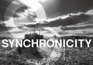 〈SYNCHRONICITY〉最終発表でBuffalo Daughter、高野寛+クラムボン伊藤、DJ YOGURTら8組追加
