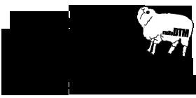 〈radioDTM配信200回記念イベント〉で太平洋不知火楽団が一夜限りの復活ライヴ