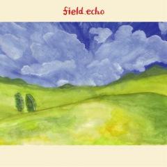 Calm&加藤雄一郎によるアルバム『field.echo』のハイレゾ音源を配信スタート