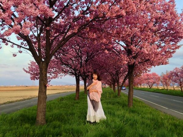 """SSW茜沢ユメルが""""平和のシンボル""""陽光桜をテーマにした新曲発表&レコ発ライヴで朗読劇も"""
