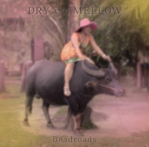 Beadroads、白井良明と榊いずみをゲストに迎えた新作をハイレゾでリリース