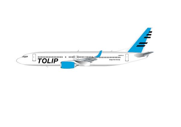 """現役パイロットにより結成! 5人組""""TOLIP""""が〈残響レコード〉より作品発表"""