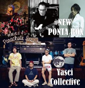 〈パラシュートセッションツアー NEW PONTA BOX × Yasei Collective〉1年ぶりに開催