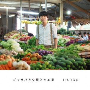 HARCO初のアナログ盤リリース、ドイツでのカッティングスタジオ・レポートをHPにて公開