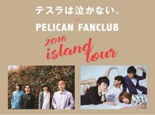 テスラは泣かない。×PELICAN FANCLUBのスプリット・ツアーが決定!