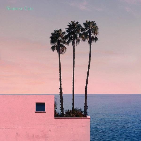 シャムキャッツ『このままがいいね』フィジカル第一弾のCDリリースが決定