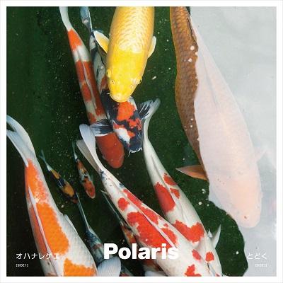 Polaris、ohanaのあのレゲエソングをカヴァー! Port of Notesとの東名阪レア公演も