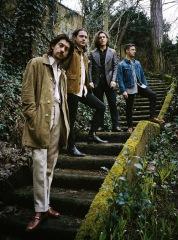 アークティック・モンキーズ、BBCセッションとオランダでの〈Best Kept Secret〉演奏を立て続けに公開!
