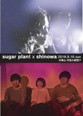 sugar plantとshinowaが月見ル君想フで2マンライヴ開催 小学生以下無料