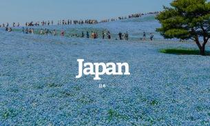 海外音楽メディア「beehype」が日本の2018年ベストアルバムにceroなどを選出