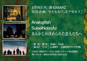 宮川企画でAnalogfish、SuiseiNoboAz、あらかじめ決められた恋人たちへ3マン・ライヴが実現