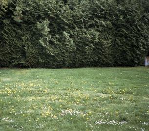 ミツメ、ニュー・アルバム『Ghosts』収録曲「なめらかな日々」のMV公開