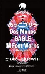 〈Flying Flags〉Vol.6開催決定、あっこゴリラ、Dos Monos、GAGLE、踊Foot Worksが出演