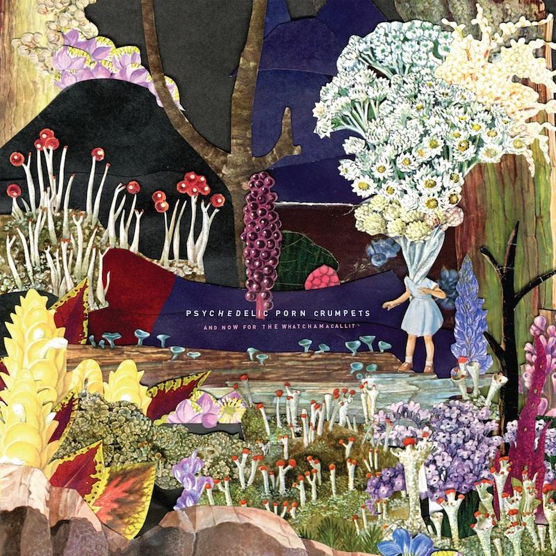 豪州サイケ楽団、サイケデリック・ポーン・クランペッツが最新アルバムの日本盤を本日リリース