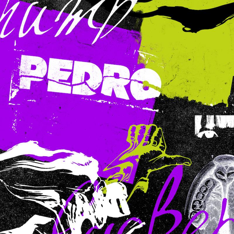 PEDRO、アルバム収録ライヴ映像を38分間限定フル公開