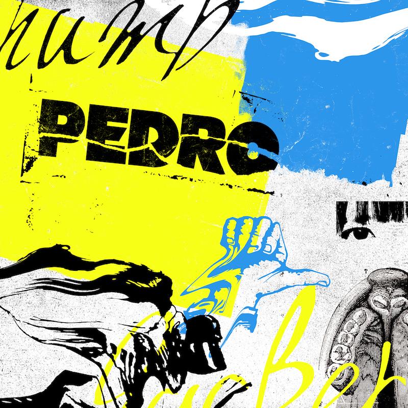 PEDRO、オフィシャルインタビュー映像をYouTubeに公開