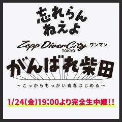 忘れらんねえよ、1/24 Zepp DiverCityワンマンライヴの生配信が決定