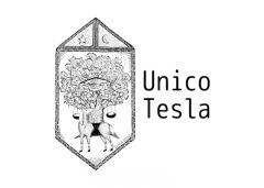 "amiinAを含めた新プロジェクト""Unico Tesla""始動"