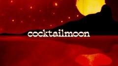 VIDEOTAPEMUSIC、10インチシングルカットされた「Cocktail Moon」のMVが公開